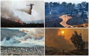 collage_grecia_incendi