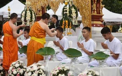 'Cinghialotti' buddisti per 9 giorni