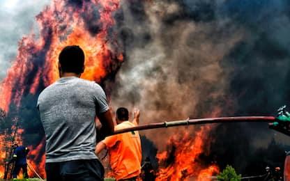 Incendi Grecia, esaminati resti degli 86 morti. Almeno 100 dispersi