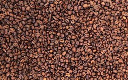 Cosmetici da fondi di caffè, start-up nata in laboratori Ca' Foscari