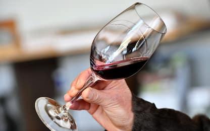 Dall'analisi del Dna la storia dei vitigni e dei vini francesi