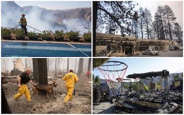 collage_incendi_california