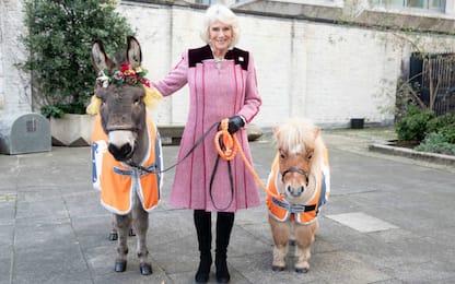 UK, Camilla a un evento benefico alla Guards Chapel