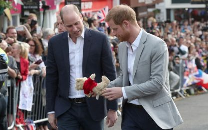 "Harry e William: ""Noi due lontani? Una storia falsa"""
