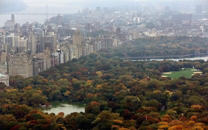 New York, acquistata per 210 milioni la casa più cara degli Usa