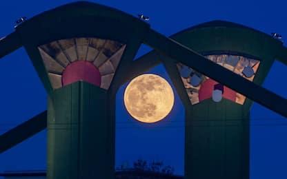 La Superluna di febbraio è la prima del 2020: quando vederla