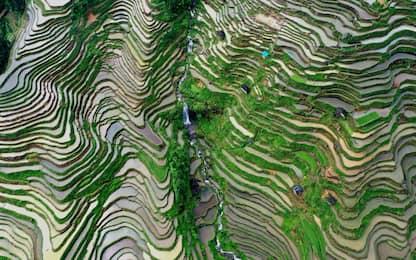 Terrazze di riso nel Sud della Cina riprese da foto aeree