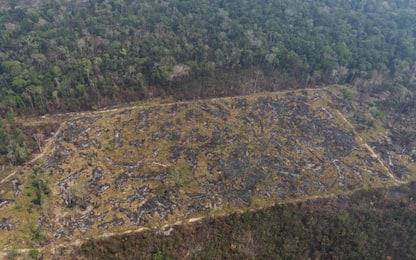 Incendi Amazzonia, schierato l'esercito: in campo 44mila soldati