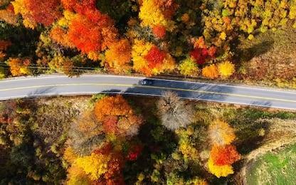Comincia l'autunno, i mille colori della stagione dal drone. VIDEO