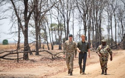 Harry in Malawi per ricordare un soldato anti-bracconaggio