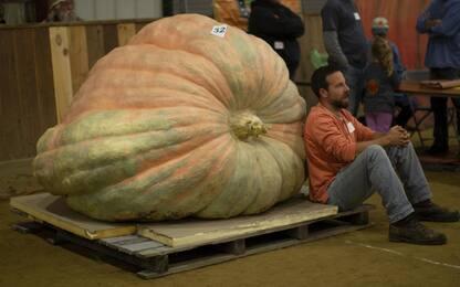Usa, alla Topsfield Fair si premia la zucca più grande. FOTO
