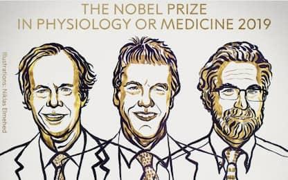 Nobel Medicina a studi su come cellule reagiscono a carenza ossigeno
