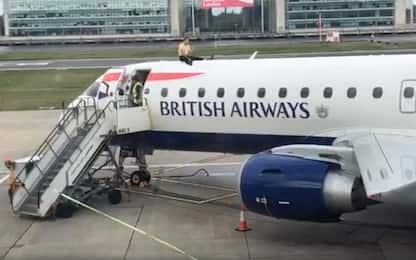 Extinction Rebellion, attivista si arrampica su un aereo. VIDEO