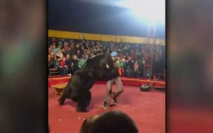 Russia, orso attacca il domatore del circo. VIDEO