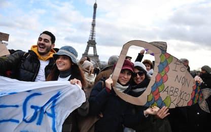 Da Parigi a Bruxelles: le Sardine nelle piazze d'Europa