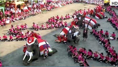 Thailandia, elefanti consegnano regali di Natale. VIDEO