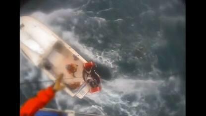 Surfista portato in salvo dopo essere stato morso da uno squalo. VIDEO
