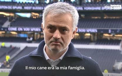 """Tottenham, Mourinho commosso in tv: """"È morto il mio cane"""""""