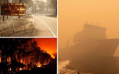 Incendi in Australia, turisti in fuga via mare: VIDEO