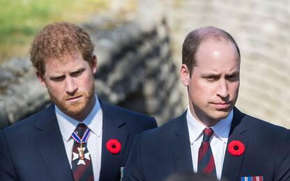 Harry e Meghan, principe William: io e mio fratello siamo lontani