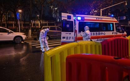 Cina, segnalato un caso di peste bubbonica in una contea dello Yunnan