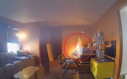 Usa, cane rovescia asse da stiro e causa un incendio. VIDEO