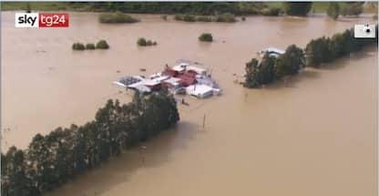 Nuova Zelanda, drammatica alluvione. Centinaia di evacuati. VIDEO