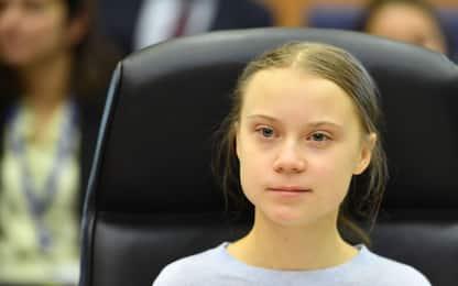 Greta Thunberg critica la legge sul clima. FOTO