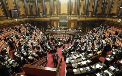 Mdp: nascono gruppi parlamentari, 36 deputati e 14 senatori
