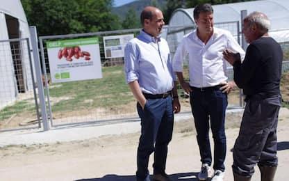 """Comunali, Renzi: """"Dati buoni"""". Martina: Pd unica alternativa a Salvini"""