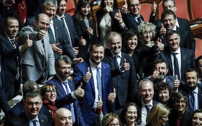 """Legittima difesa, Senato approva il ddl. Salvini: """"Bellissimo giorno"""""""