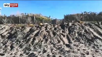 """Grillo fa gli auguri mentre scava fossa: """"Basta aver paura"""". VIDEO"""