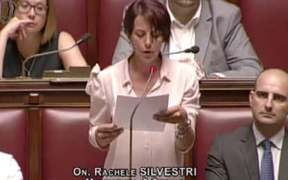 Insulti sessisti su Fb a Silvestri, deputata che ha lasciato il M5s