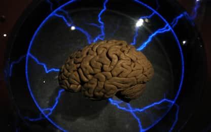 Movimenti nello spazio, ecco come il nostro cervello li percepisce