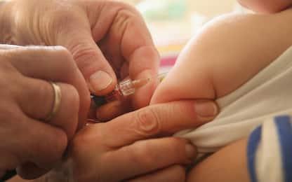 Vaccini, il Veneto impugna decreto del governo davanti alla Consulta
