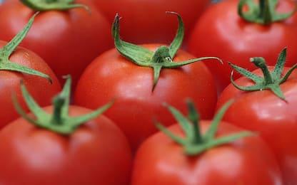 Scoperto nei pomodori il gene responsabile dell'invecchiamento