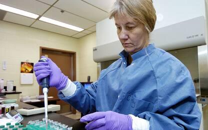 Celiachia: un virus potrebbe concorrere a causare la malattia