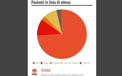 Trapianto degli organi in Italia: tutti i dati. INFOGRAFICA