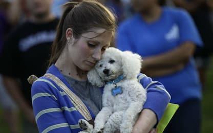L'empatia e la cura verso gli animali sono scritte nel Dna