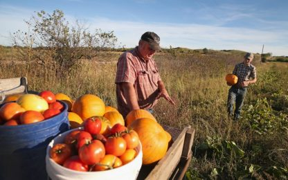 Forum Barilla: Italia al 7° posto per sostenibilità alimentare