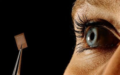 Topi ciechi tornano a vedere con iniezione di un gene nella retina