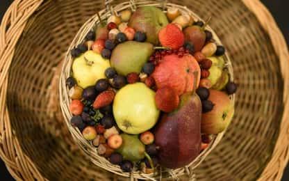 Torino, sequestrati 6 quintali di frutta ammuffita destinata a mercato