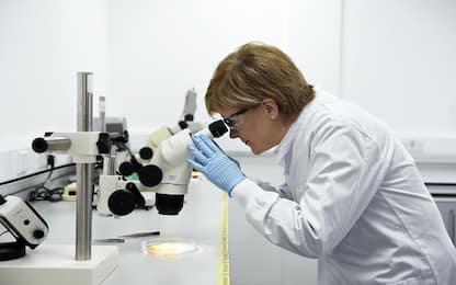 Coronavirus, possibili danni anche al sistema endocrino