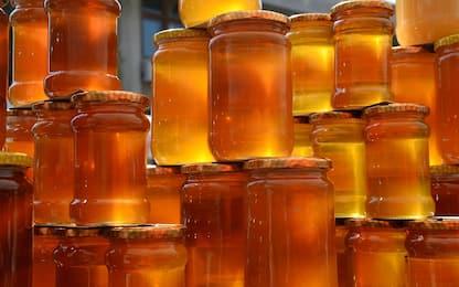 Sequestrate 7 tonnellate di miele non idoneo al consumo nel Catanese