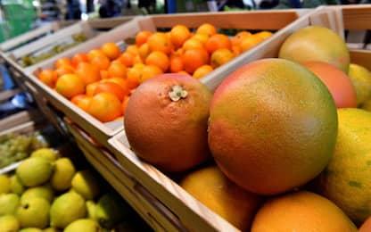 Siracusa, sequestrate due tonnellate di agrumi a venditori ambulanti