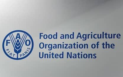 Giornata mondiale dell'Alimentazione: obiettivo FAO è Fame Zero
