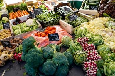 Frutta e verdura di stagione, l'elenco dell'inverno. FOTO
