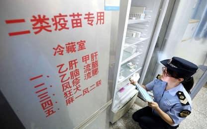 Virus cinese, possibile sviluppare un vaccino in pochi giorni