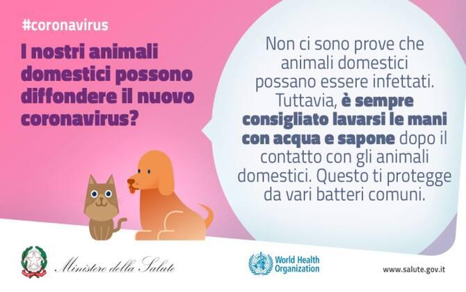 Coronavirus I Consigli Del Ministero Della Salute Sui Social Per La Prevenzione Sky Tg24
