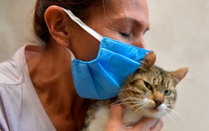 Coronavirus, i consigli dell'Iss per accudire gli animali